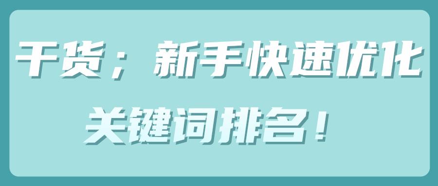 干货;新手快速优化关键词排名!【视频教程】