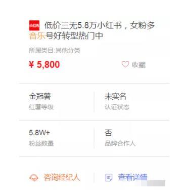快速变现小红书副业赚钱项目,月增收入5000+
